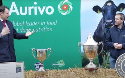 Homecoming of the NDC and Kerrygold Milk Quality Award 2020