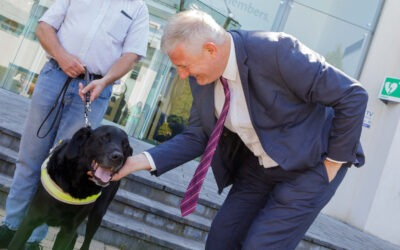 Irish Guide Dogs for the Blind named as Aurivo charity partner 2021